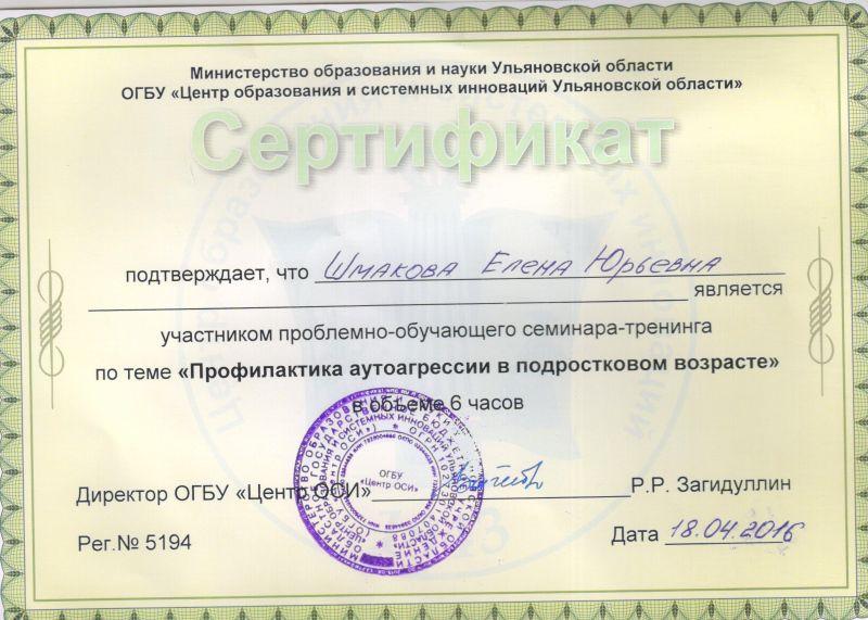 сертификат шмакова 001
